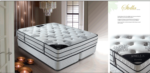 STARLINE MOBILYA / Stella Visco Plus Pocket spring Mattress