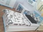 Cicibebe ve Genç Odası / Ankara model