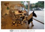 www.lacote.com.tr / çiftlik araba yatak