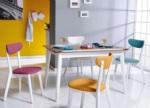 Özüçler Mobilya / Miami Renkli Mutfak Masa Takımı